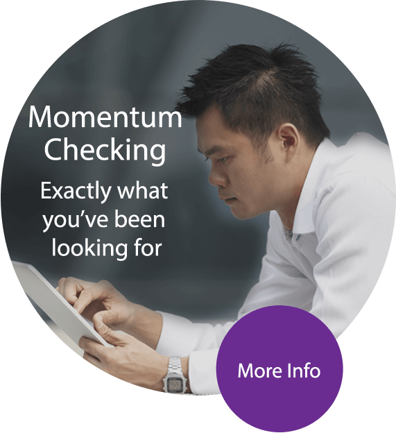 Momentum Checking Exactly what you've been looking for - More Info